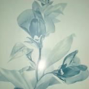 """Садко Панель пластиковая матовая 3000*250*10 орхидея - Интернет-магазин строительных и отделочных материалов, кровли, фасадов, печей, каминов Компании """"Интер -Технология""""."""